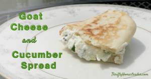 Goat Cheese and Cucumber Spread