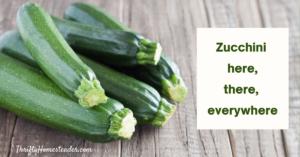 Zucchini here, there, everywhere