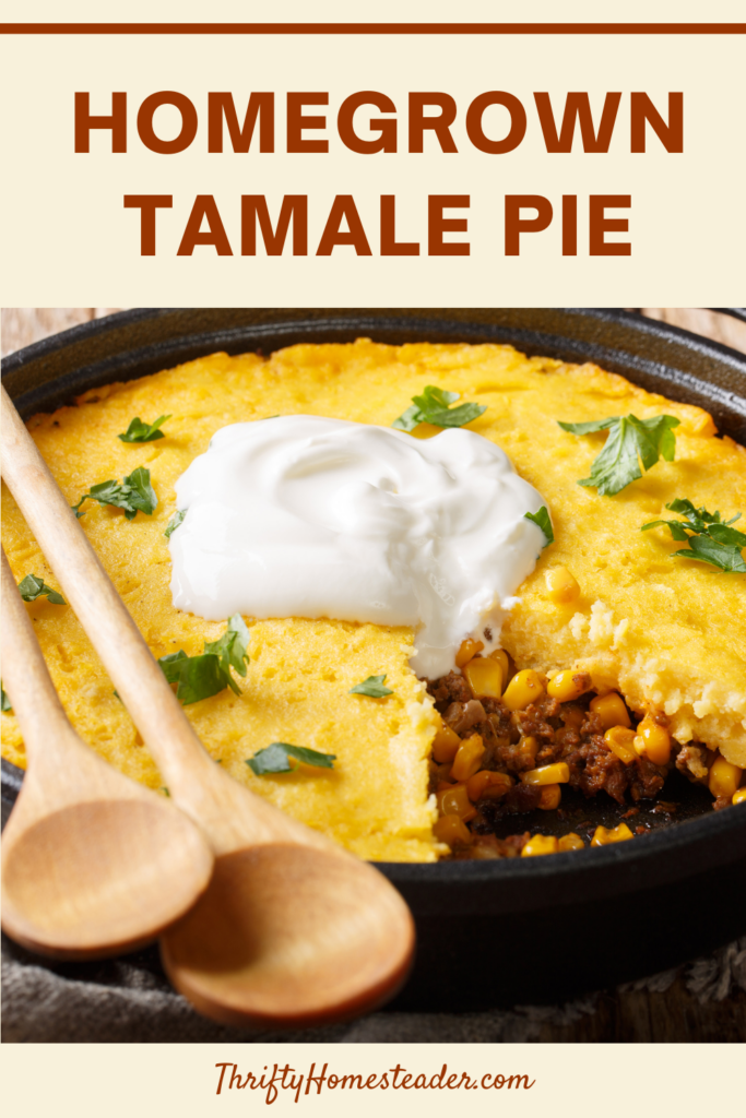 Homegrown Tamale Pie