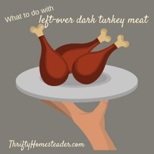 leftover turkey