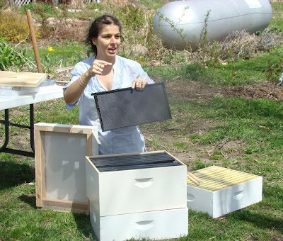 Interview with beekeeper Zan Asha
