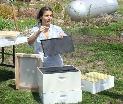Interview with beekeeper Zan Asha