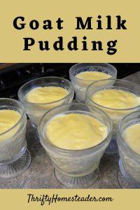 goat milk pudding