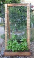 Garden Vertically With a Sandwich Board A-Frame