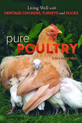 Q&A with the author of <i>Pure Poultry</i> and a giveaway