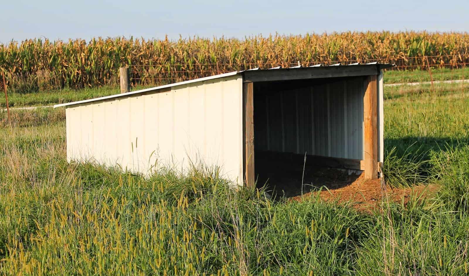 ^ Sheltering your goats - he hrifty Homesteader