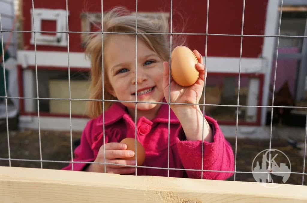 girl with chicken egg