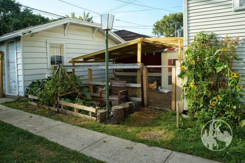 coop for our chickens