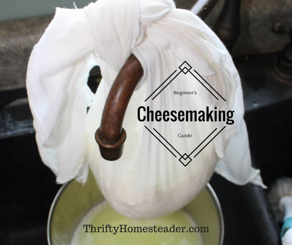 Cheesemaking for beginners