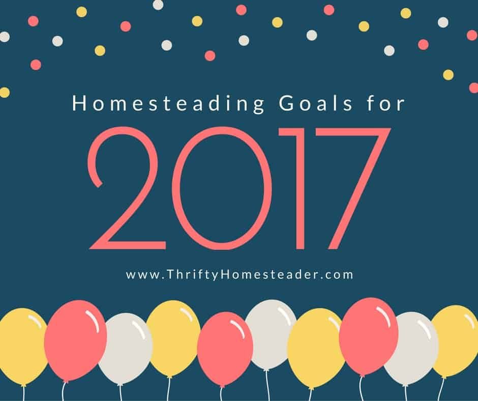 Setting homesteading goals for 2017