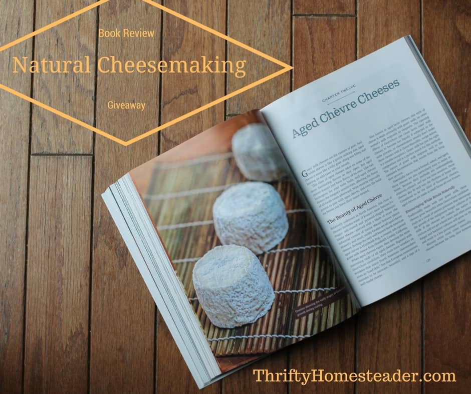 Natural Cheesemaking book review