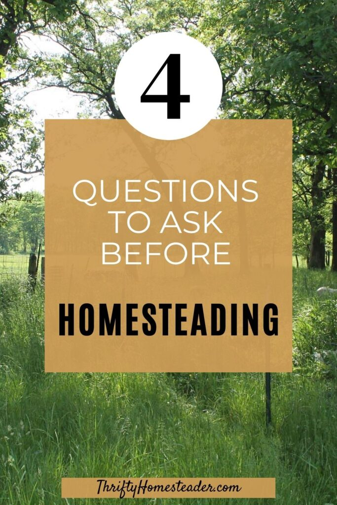 4 Questions to ask before homesteading