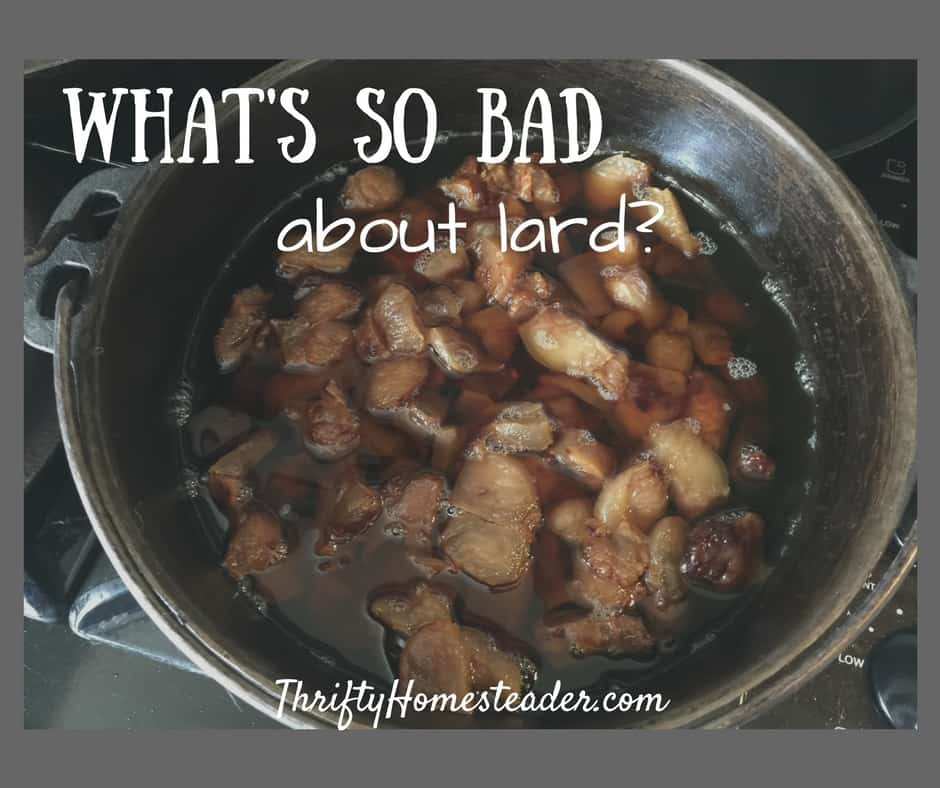What's so bad about lard?