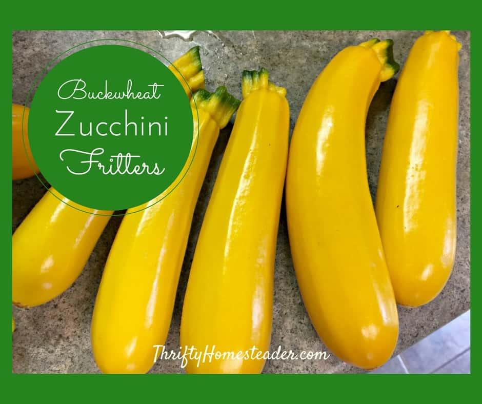 Buckwheat zucchini fritters