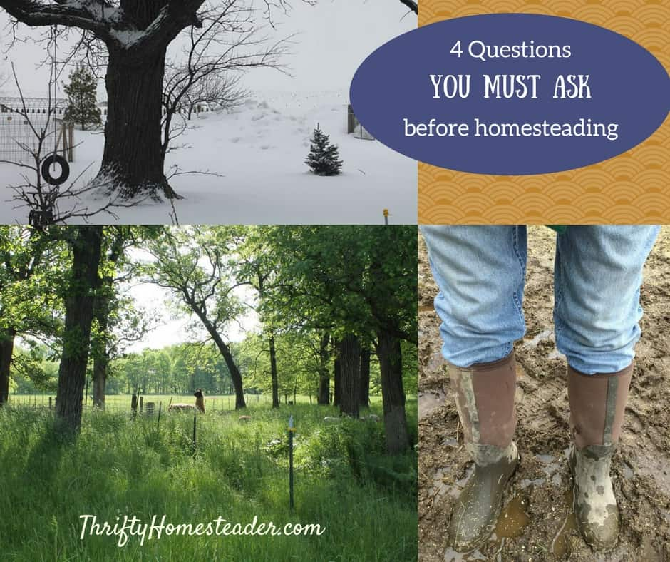 4 Questions You Must Ask Yourself Before Homesteading
