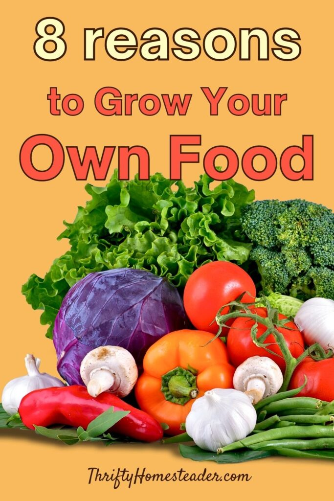 8 reasons to grow your own food