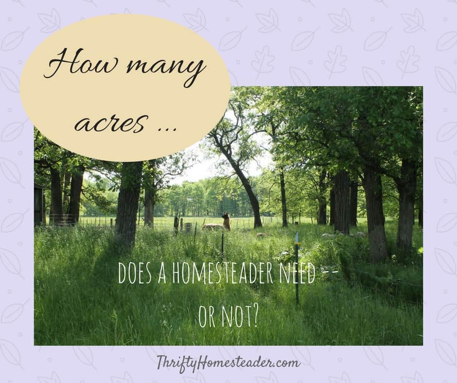 How many acres does a homesteader need — or not?