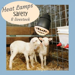 heat lamp safety