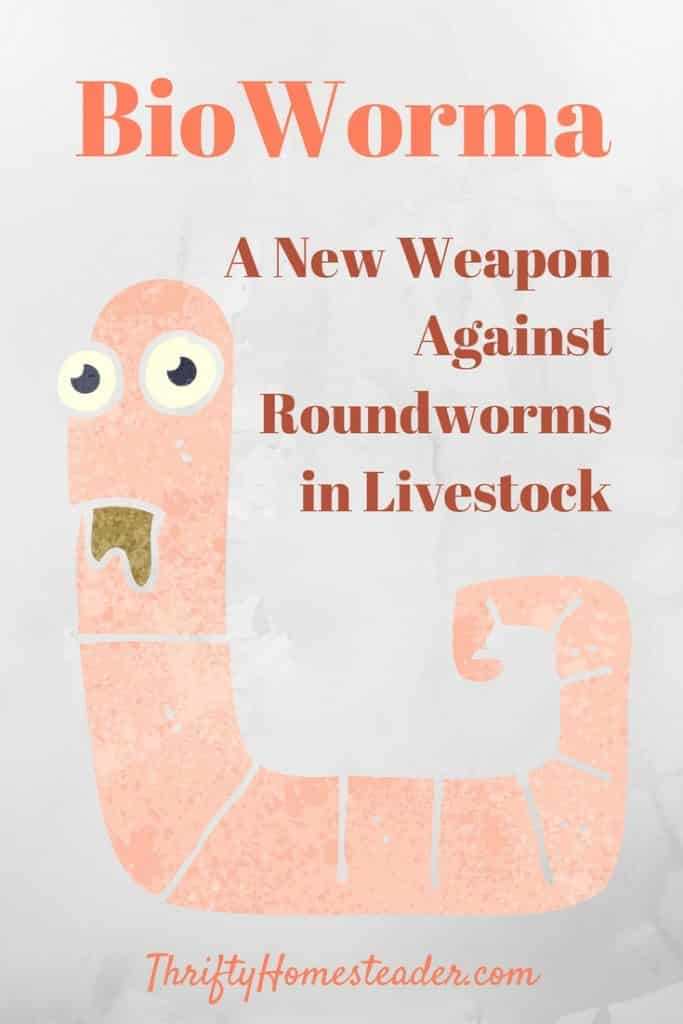 BioWorma: A New Weapon Against Roundworms in Livestock