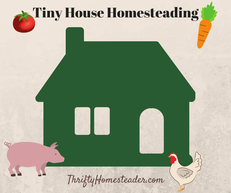 tiny house homesteading
