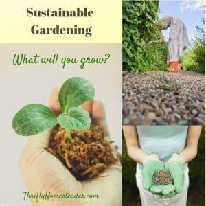 sustainable gardening