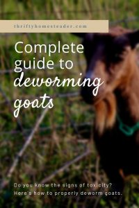 Deworming Goats - The Thrifty Homesteader