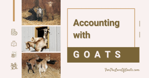 Accounting with Goats