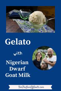 Gelato with Nigerian Dwarf Goat Milk