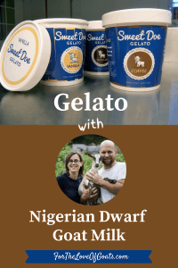 Gelato with Nigerian Dwarf Goat Milk