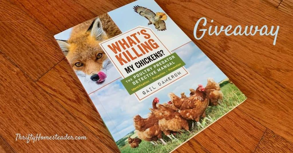 "book cover for ""What's Killing My Chickens?"""