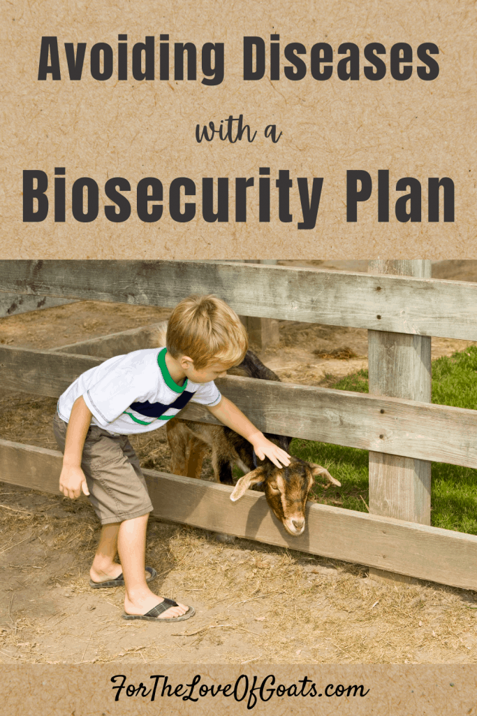 Avoiding Diseases with a Biosecurity Plan