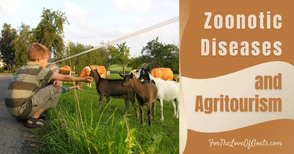 Zoonotic Diseases and Agritourism