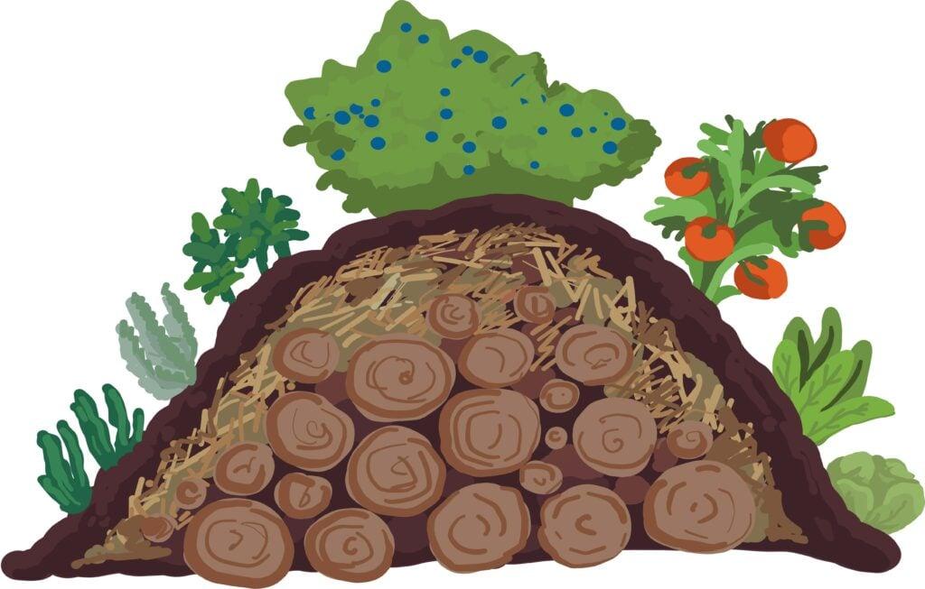 no waste composting_illustration
