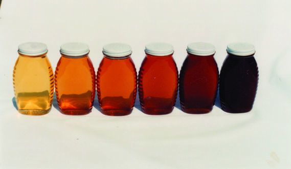 honey in different colors and flavors